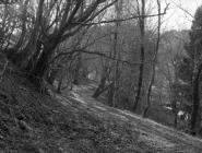 Cambria Wyn quarry Ceinws/ Esgairgeiliog