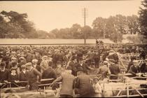 Cowbridge livestock market ca 1910