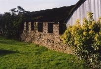 Town walls, Cowbridge 2003