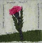 Marsh Thistle by Maureen Lewis
