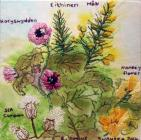 Western Gorse/Tree Mallow/Sea Campion by Rhian...