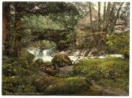 Torrent Walk, Dolgellau c.1890