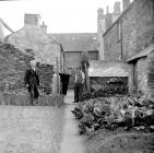Pobl Castellnewydd Emlyn yn y 1950au