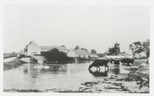 Llanmaes Pond