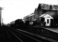 Wyndham Railway Halt