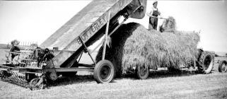 29 Butterley green-crop loader, 1951