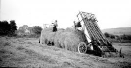 30 International green-crop loader, 1952