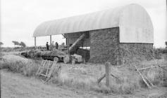 10 Sheaf stack at hay shed 1951