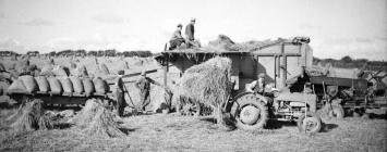 14 Threshing, Fergy bringing in mows, St....