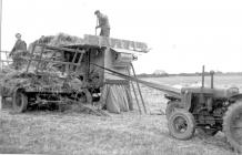Threshing at Pantyrhuad, 1951