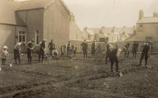 Vegetable plot in Milford Haven, 1917
