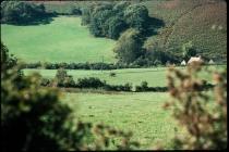 Pant Wilkin farm, Aberthin 1976