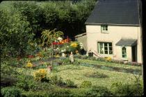 Pen y bryn cottage Aberthin 1981