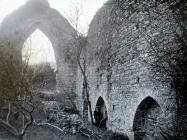 The Nave of St Dogmaels Abbey in 1916