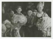 Wool Gathering Boys