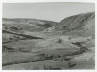 Dolgoch Farm