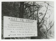 Allt yr Hwch Nature Reserve