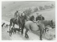 Gathering Sheep on Horseback