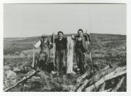 Three Forest Workers