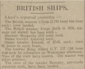 BRITISH SHIPS.