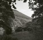 Ruined cottage of Maesygorwyr, Corris Uchaf