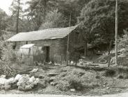Outbuildings belonging to Brynmair smallholding...