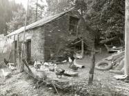 Brynmair smallholding bungalow