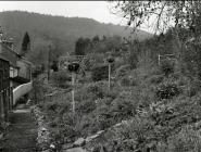 Back garden at Yr Efail