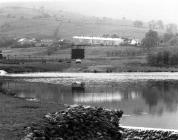 Bwllfa Terrace