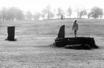 Gorsedd Stones in Aberdare Park