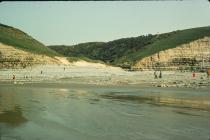 Cwm Nash shore, nr Llantwit Major 1976