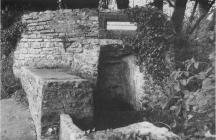 Dr. Salmon's well, Penllyn 1970s