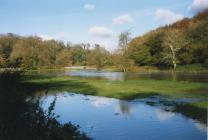 River Thaw by Llandough mill 1996