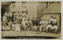 Sheepshearing at Pwllpeiran 1913