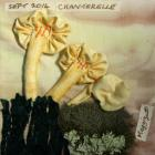 Chanterelle by Maggie Drew