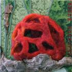 Lattice Stinkhorn by Marysia Penn