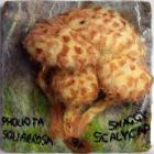 Shaggy Scalycap by Susan Davies