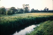 The Three Fields, Llanblethian, nr Cowbridge...