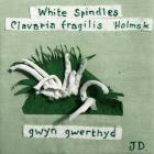 White Spindles by Judith Davies