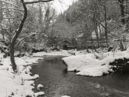 Pont Evans a'r bwthyn, Ceinws / Esgairgeiliog