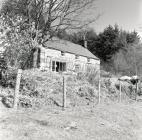 Penlan Farm, Dyfi forest, near Ceinws /...