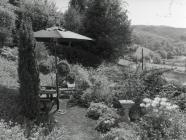 Garden at Yr Efail, Ceinws / Esgairgeiliog, May...