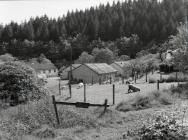 The Back of the Forestry Commission Camp,...