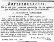 A Dangerous Companion - Correspondence to The...