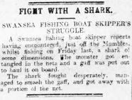 Fight with a Shark - Article from The Cambrian,...