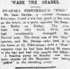 'Ware the Sharks - Erthygl o The Cambrian, 1909