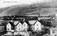 Walton Terrace, Aberangell, 1902