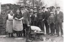 The killing of Bess Brace's pig  Tonmawr...