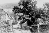 Dinas Mawddwy about 1890
