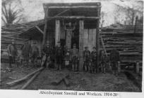 Aberdwynant Sawmill 1914-20